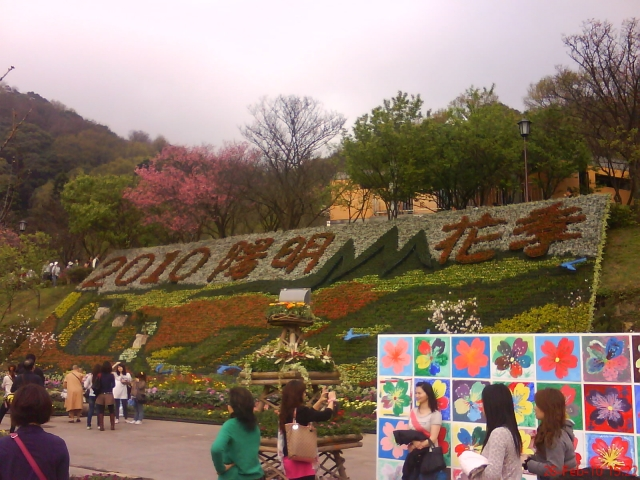 花季logo